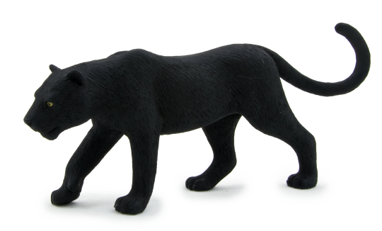 Png images of black panther cats. Mojo wildlife