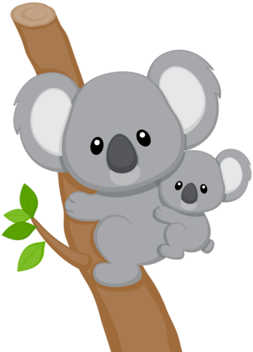Png images of koala bear. Koalas pinterest bujo hand