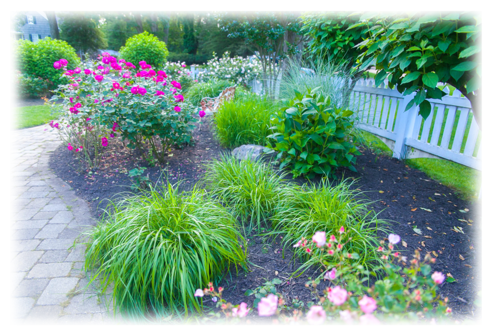 Png landscaping toms river nj. Lawngevityhome lawngevity provides