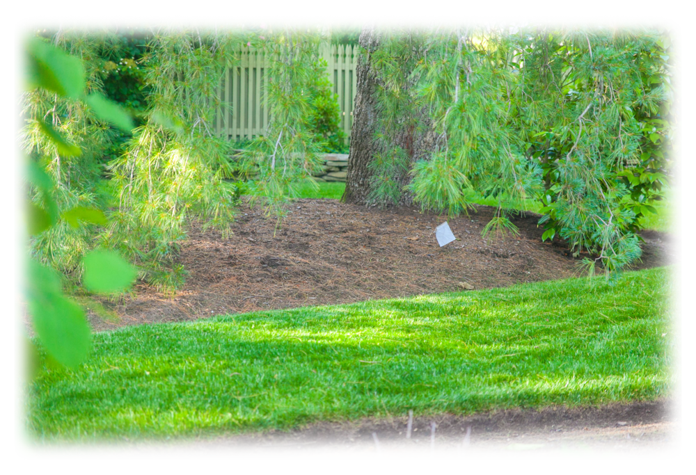 Png landscaping toms river nj. Lawngevityhome lawngevity