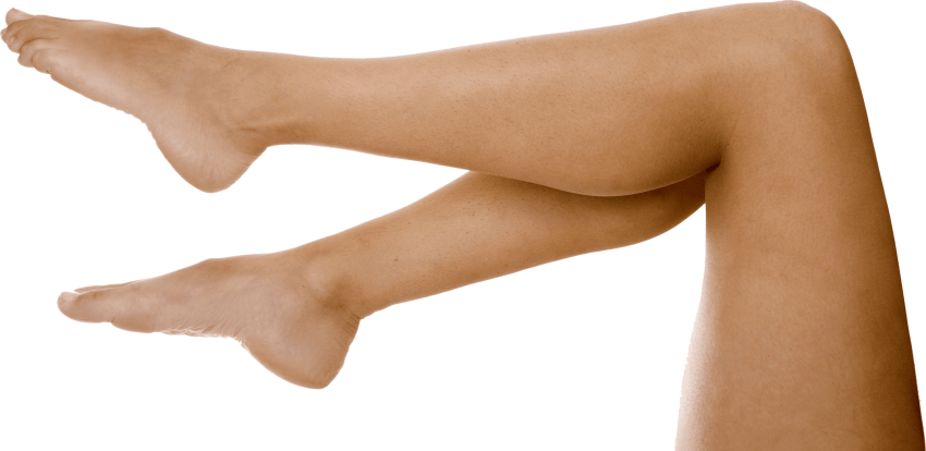Png legs. Women free images toppng