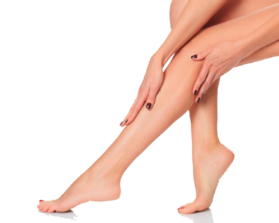 Png legs. Free download all
