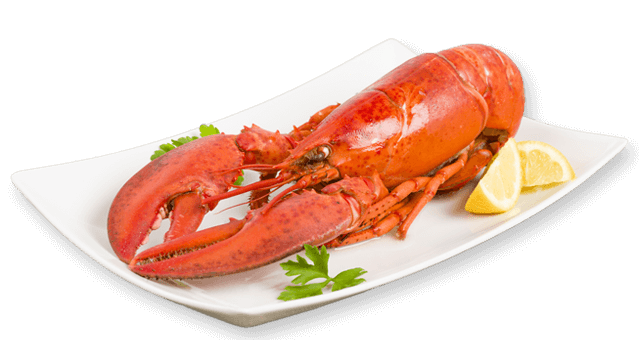 Png lobster. Maine recipes from