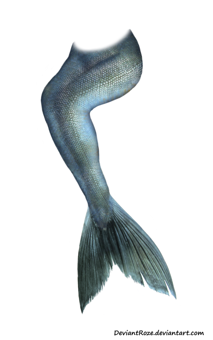 Png mermaid tail. Updated by deviantroze on