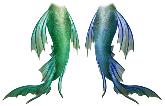 Png mermaid tail. Favourites by magicangel on