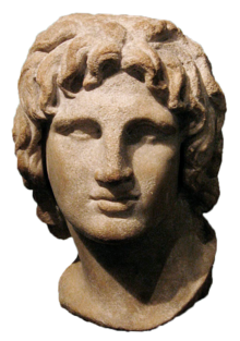 Sculptural drawing david statue face. Alexander the great wikipedia