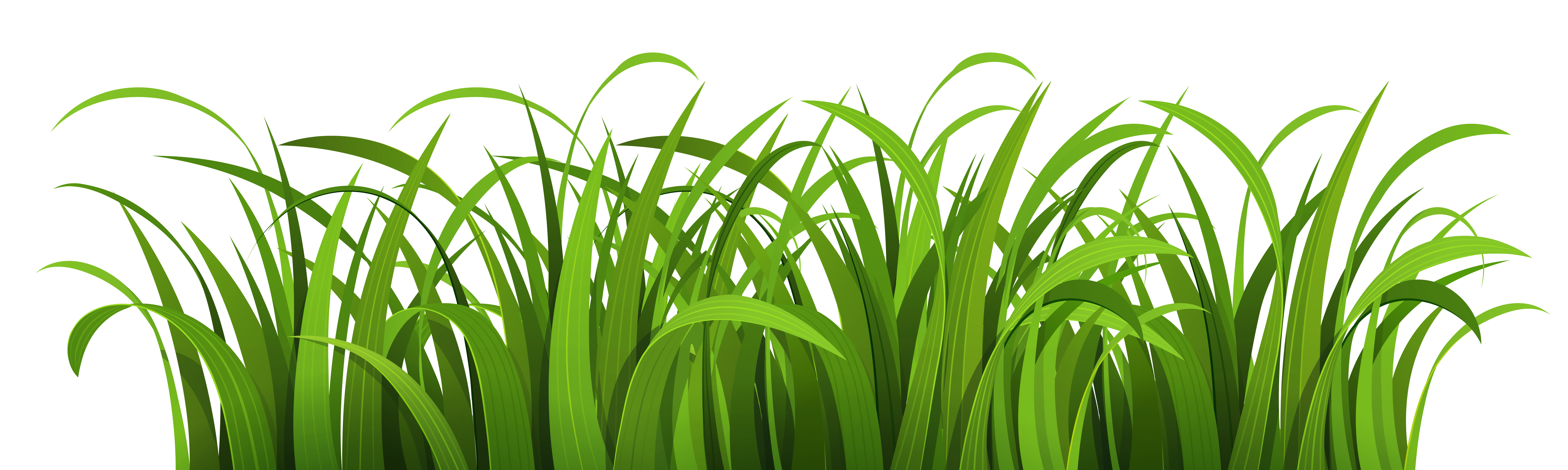 Png nature background. Clipart image purepng free