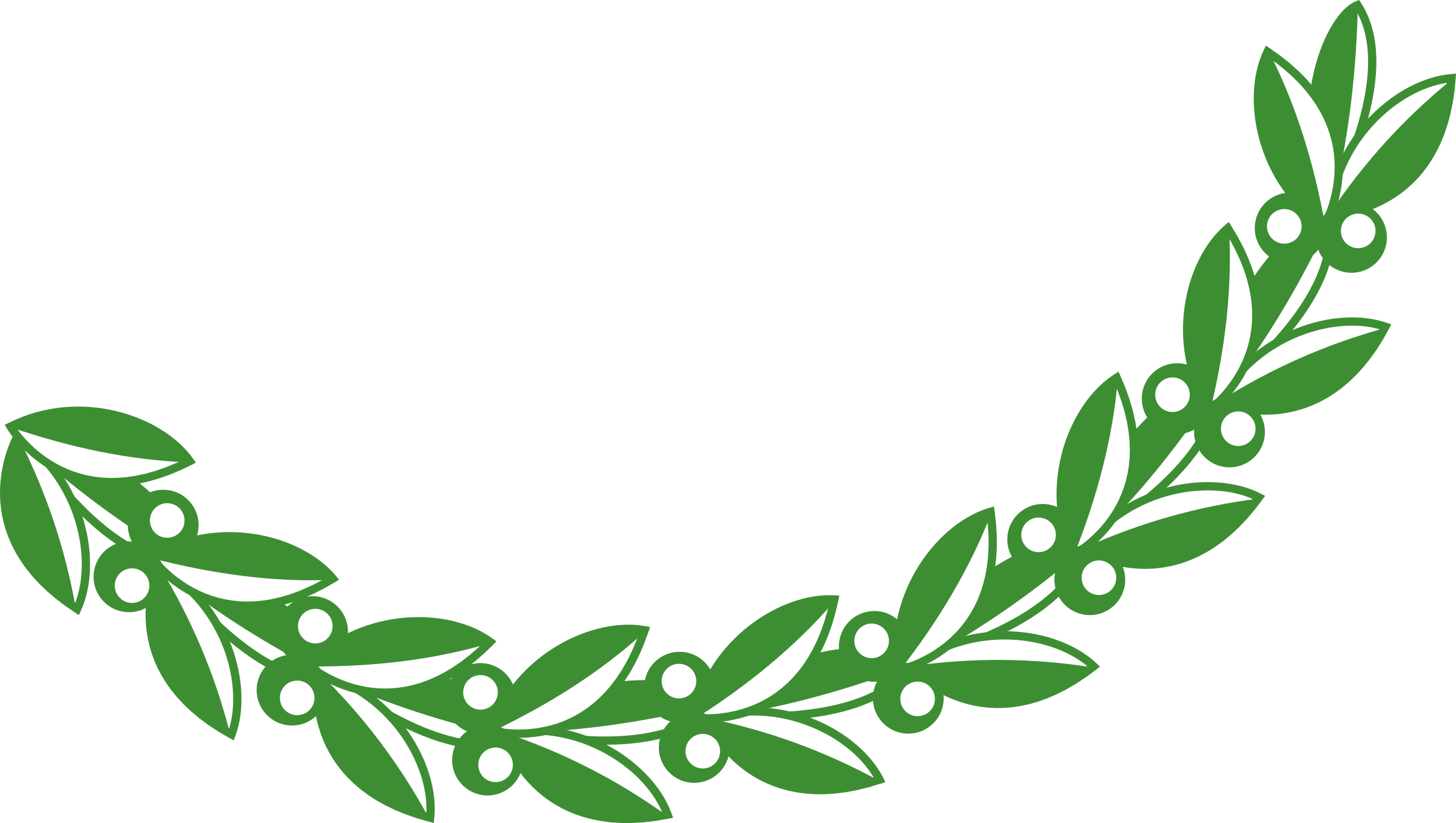 Png olive branch. Collection of clipart