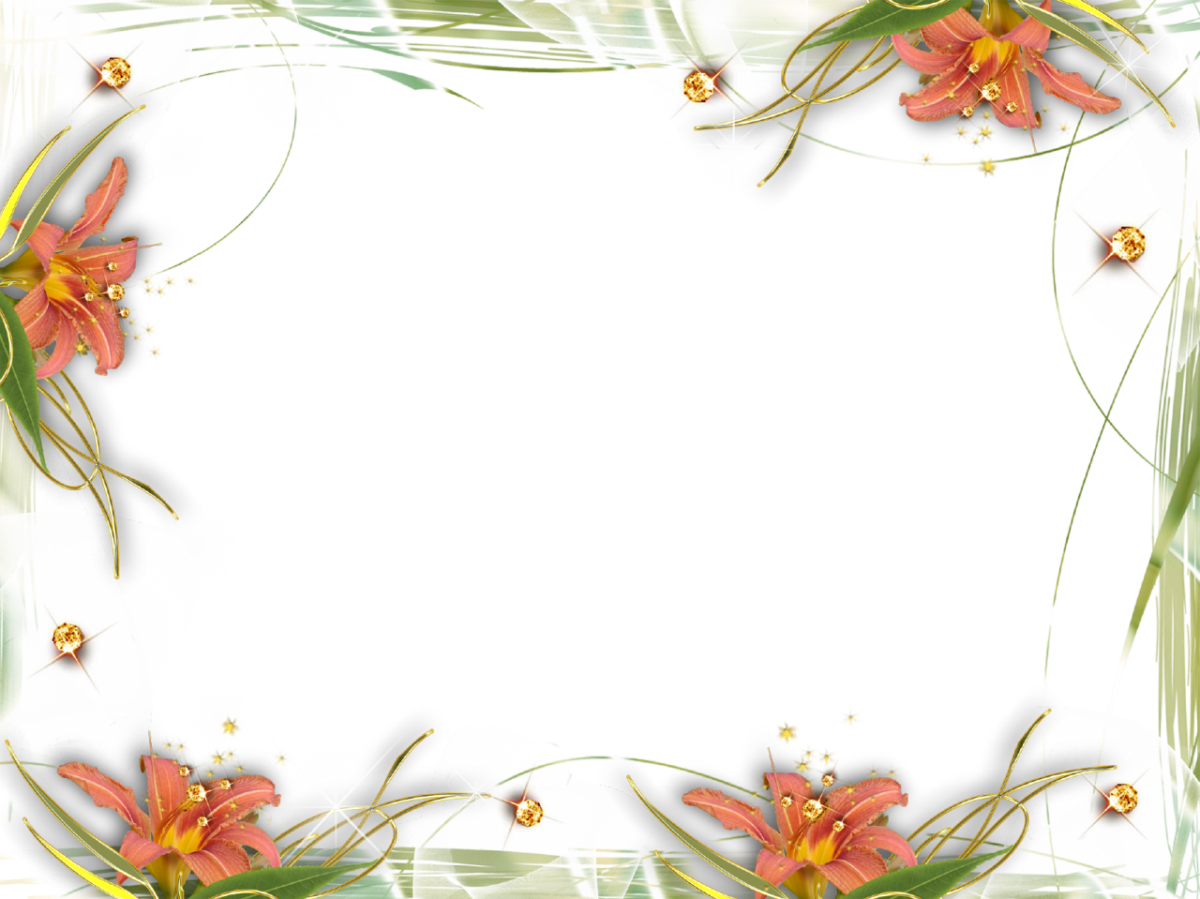 Png photo frames. Free abstract floral frame