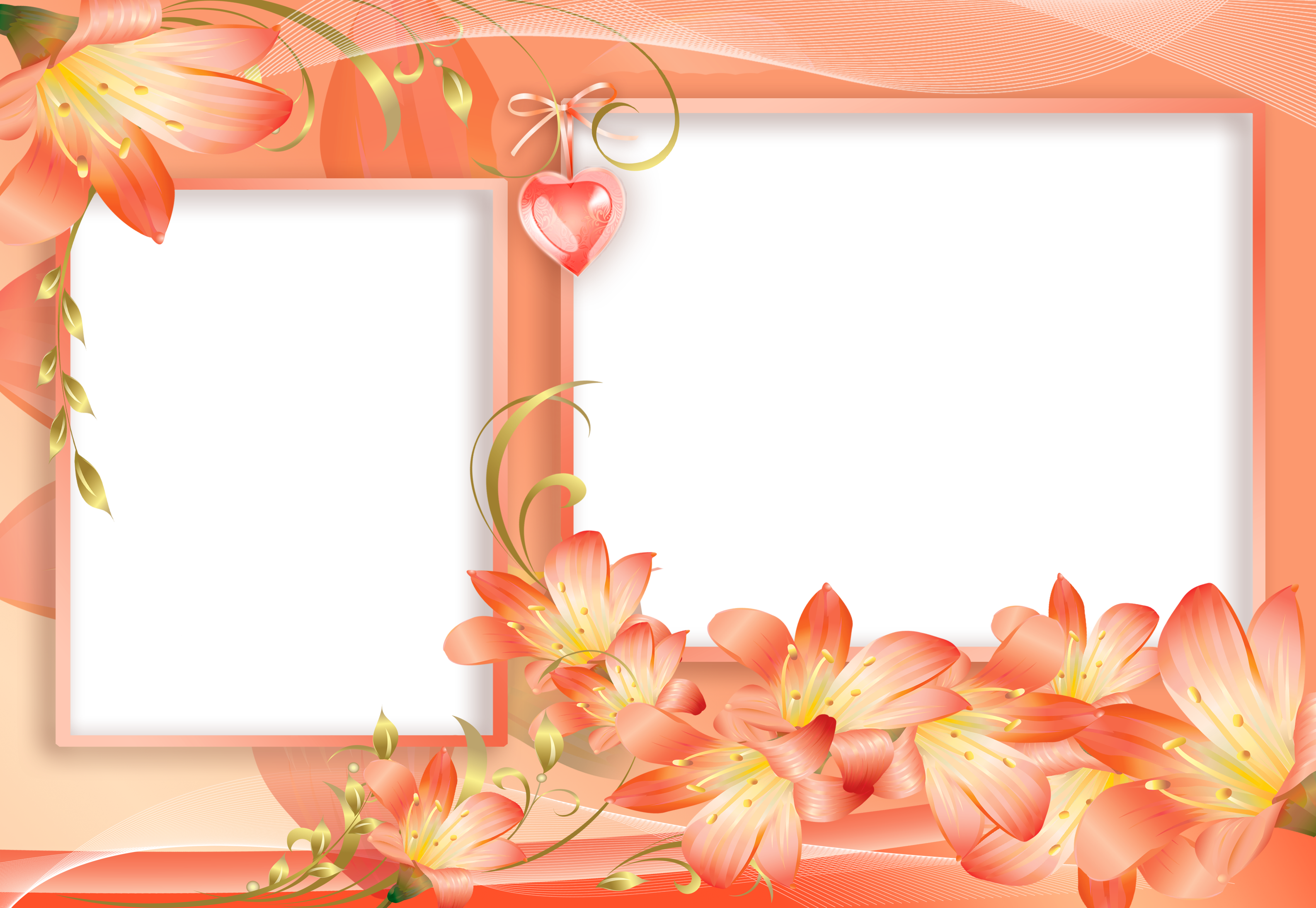 Png photo frames free. Orange and yellow flowers