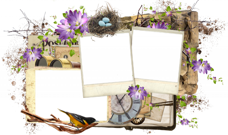 Frame by bibi nd. Png photo frames banner royalty free library