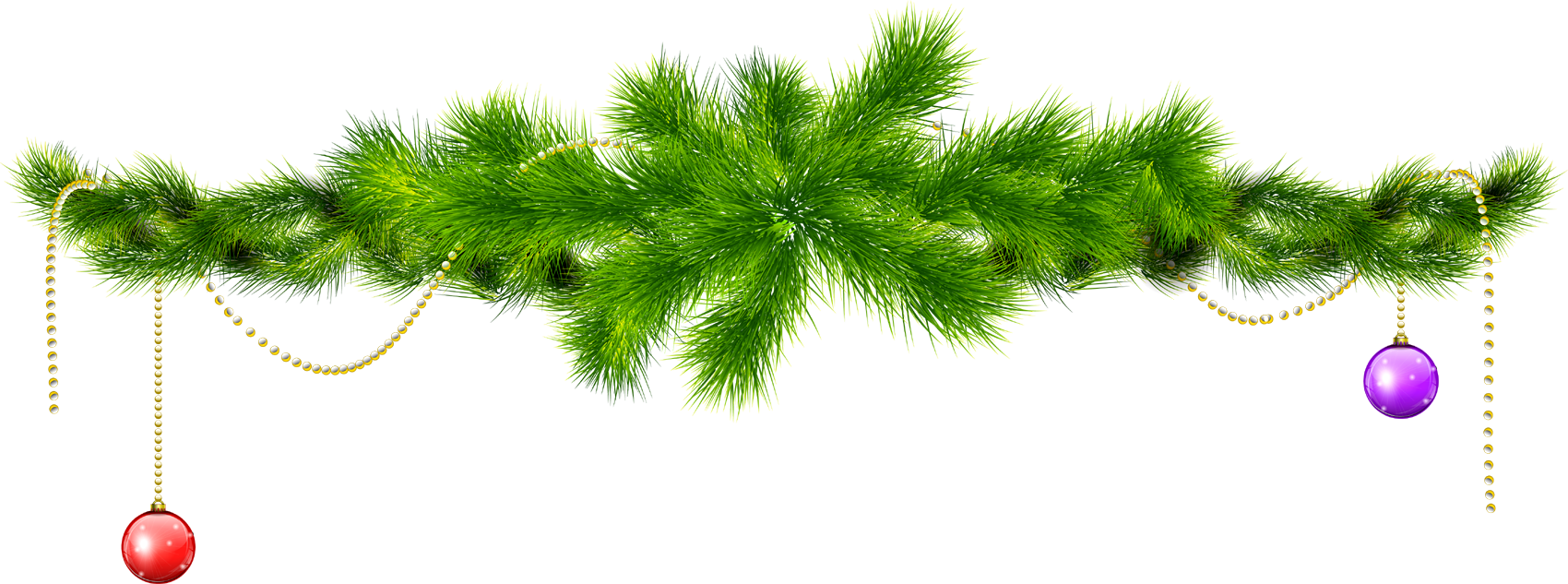 Christmas pine png. Holly images free download