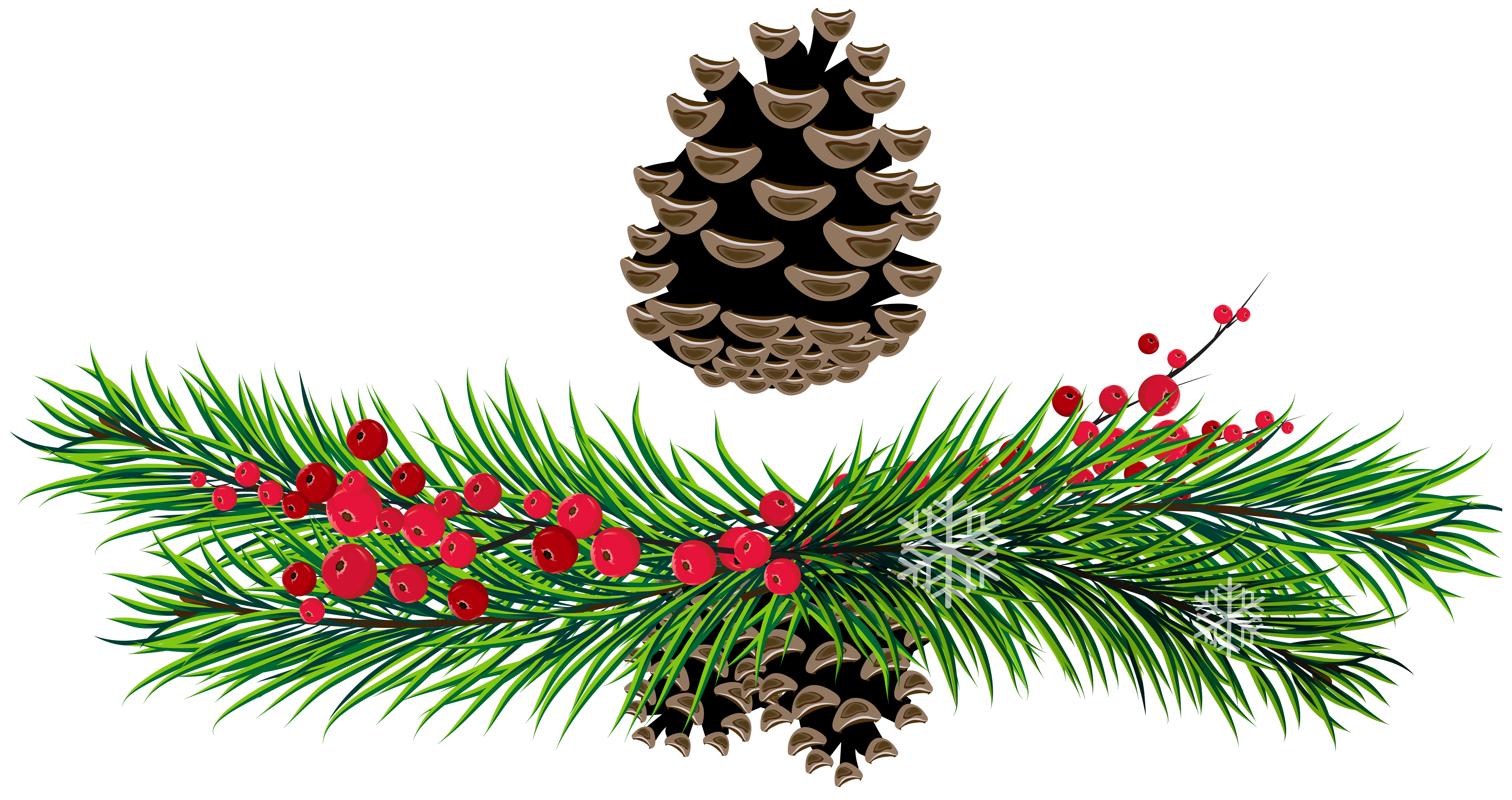 Christmas greenery png. Tree branch free cliparts