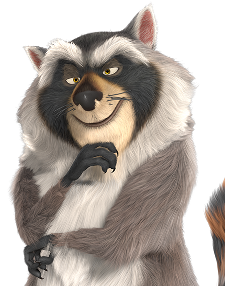 Png raccoon. Image square the nut
