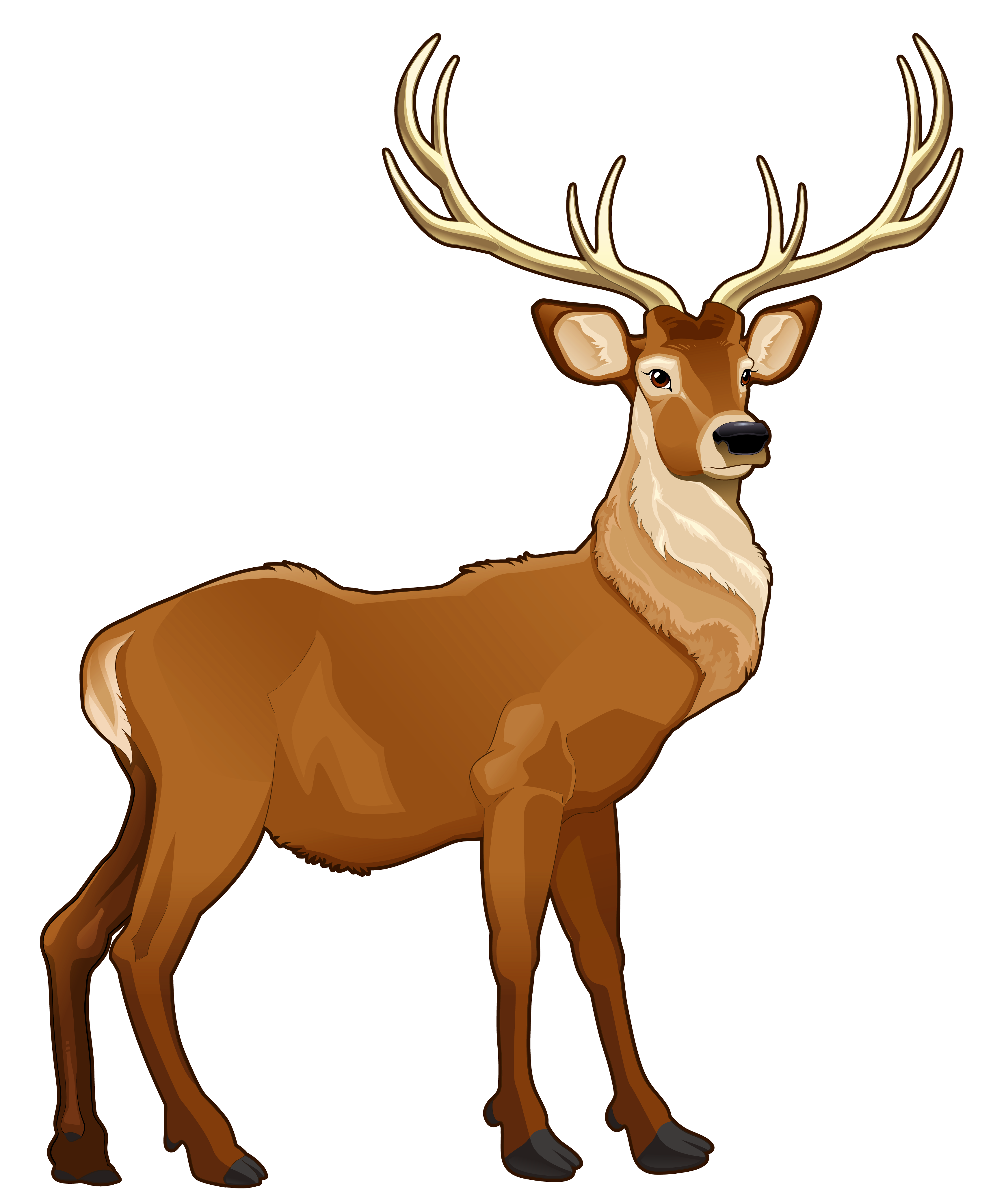 Png reindeer antlers. Brown clipart picture animals