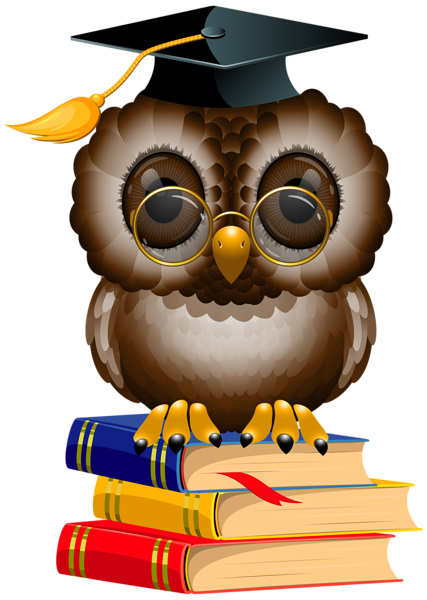 Graduate drawing owl. With school books and