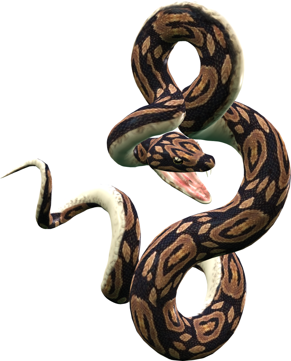 Carpet drawing python snake. Png transparent images pluspng