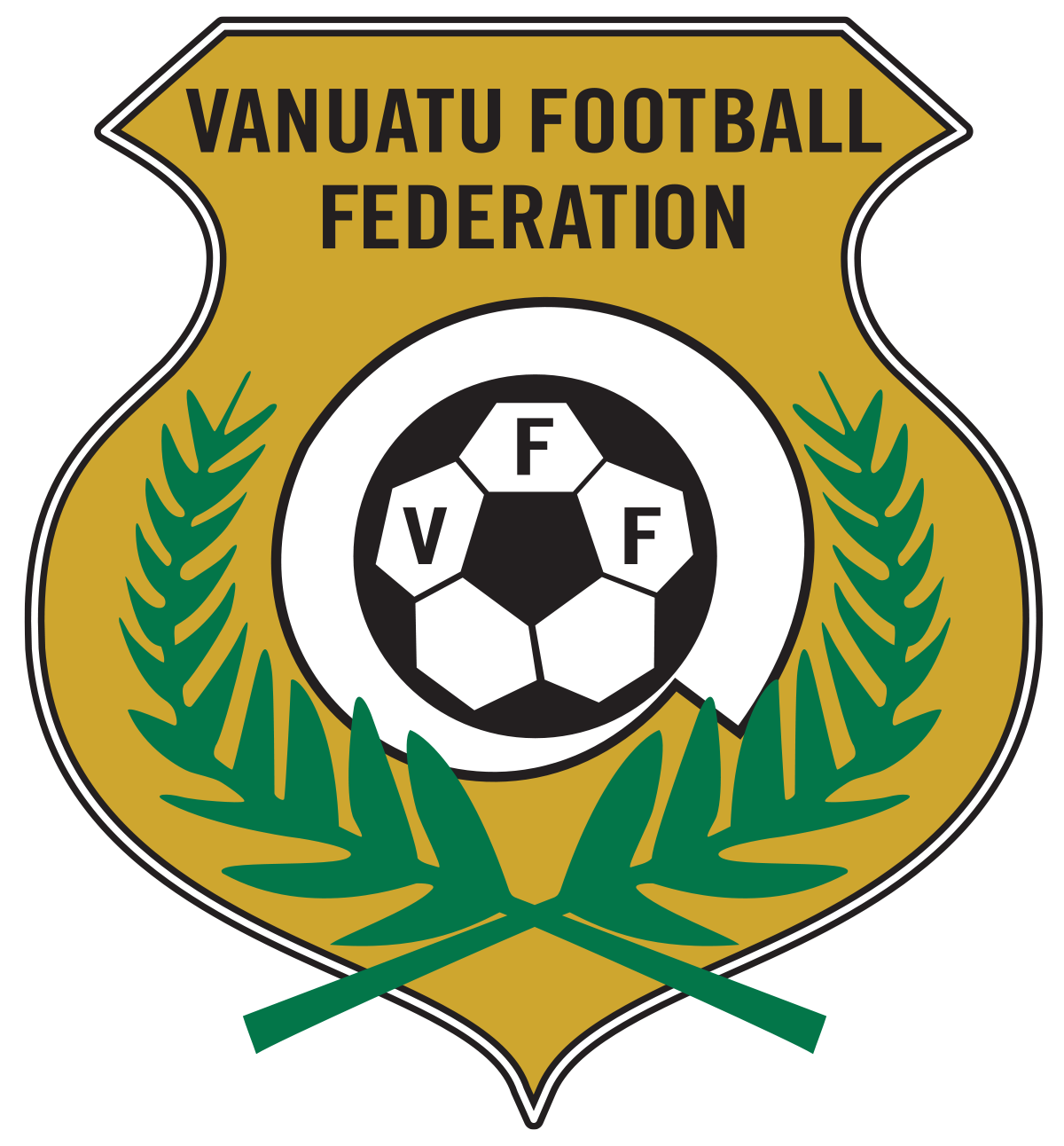 Png south pacific games 2015. Vanuatu national football team