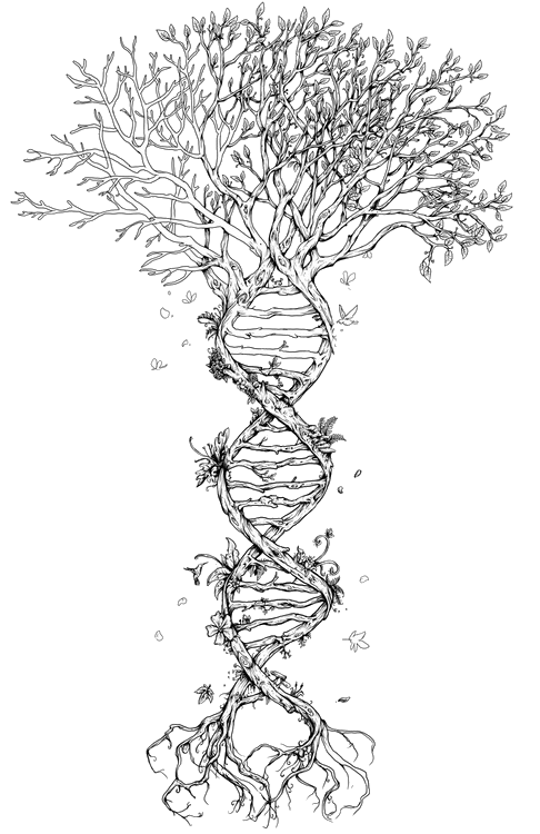 trippy transparent dna