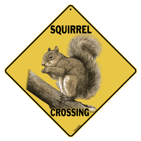 Png squirrel. Gray crossing sign chris