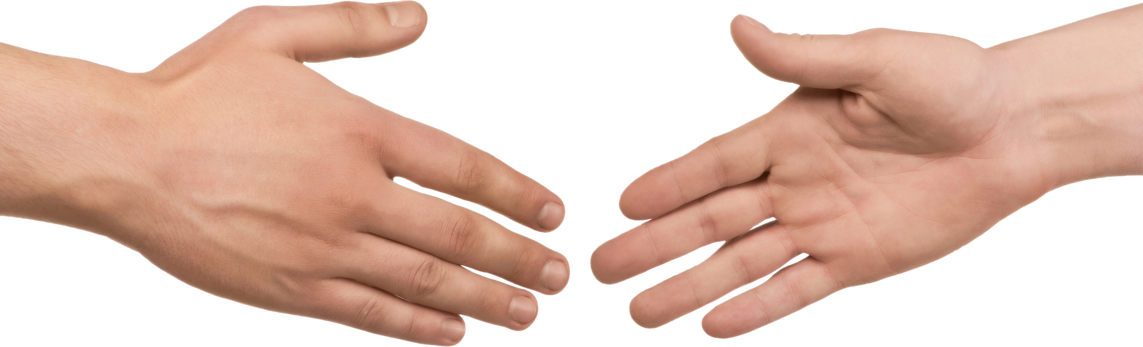 Back of hand png. Hands image purepng free