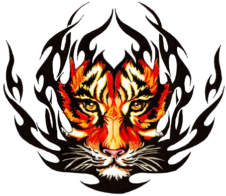 Png tribal designs. Image tiger tattoos animal