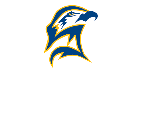 Seahawks vector decal. Png text logo image