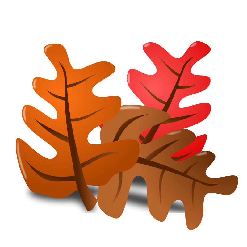 Png thanksgiving. Transparent images all picture