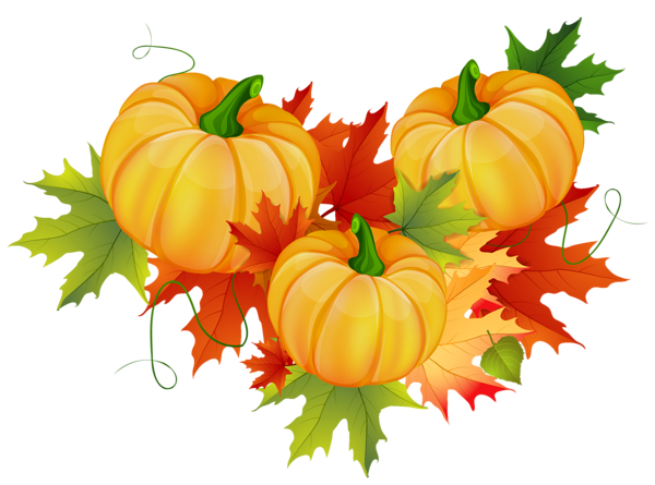 Png thanksgiving. Pumpkin decoration clipart and
