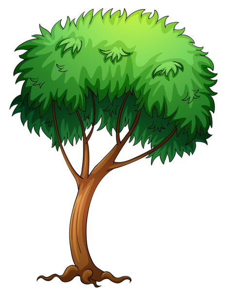 Painted clipart picture trees. Cartoon tree png clip transparent
