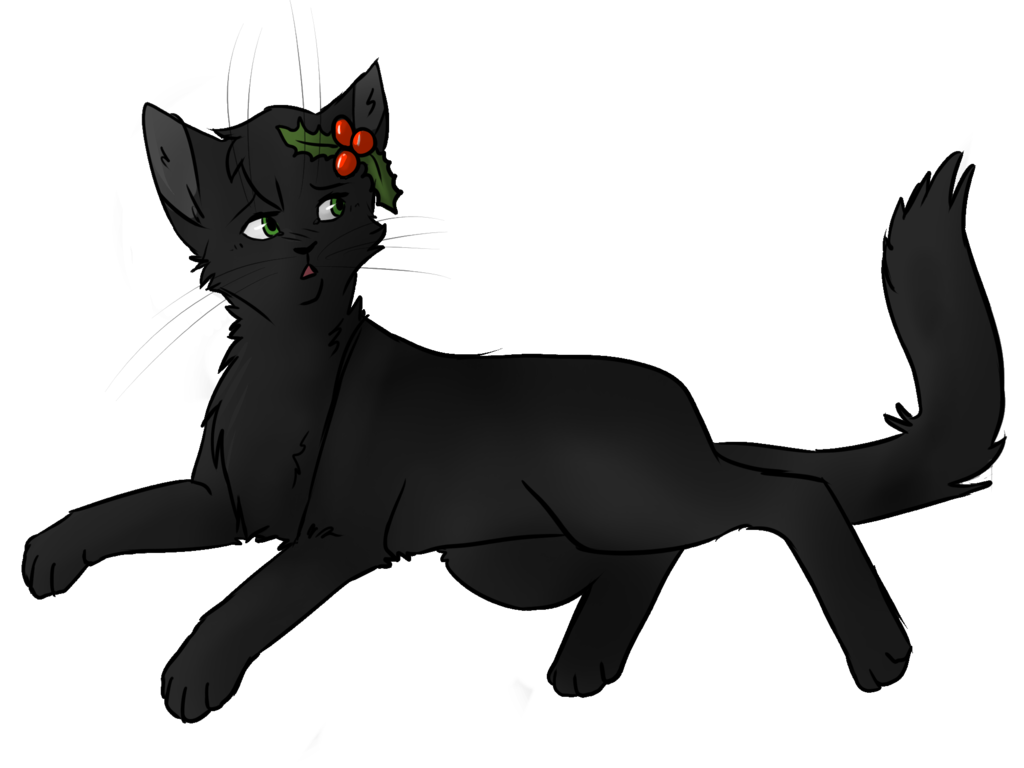 Png version of warrior cats. Image hollyleaf by niuwna