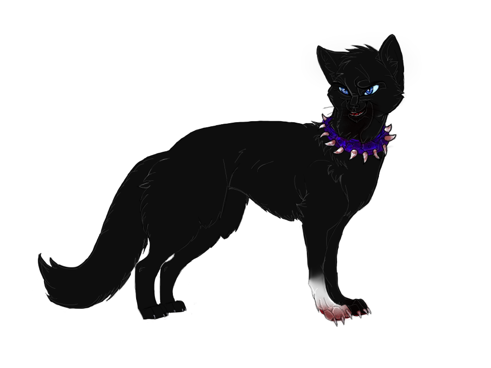 Png version of warrior cats. Image adult scourge by