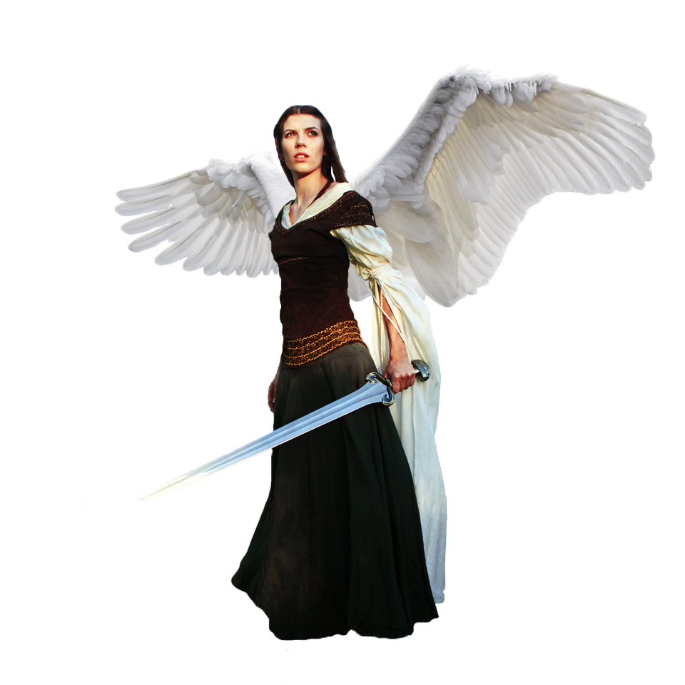 Angel male png. Warrior transparent images all