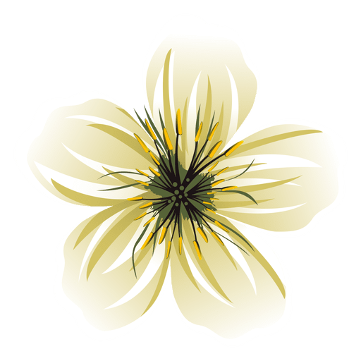 Png white flower. Cartoon transparent svg vector