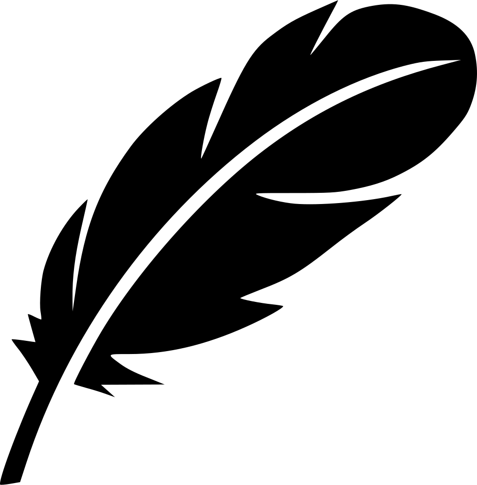 Feathers icon png