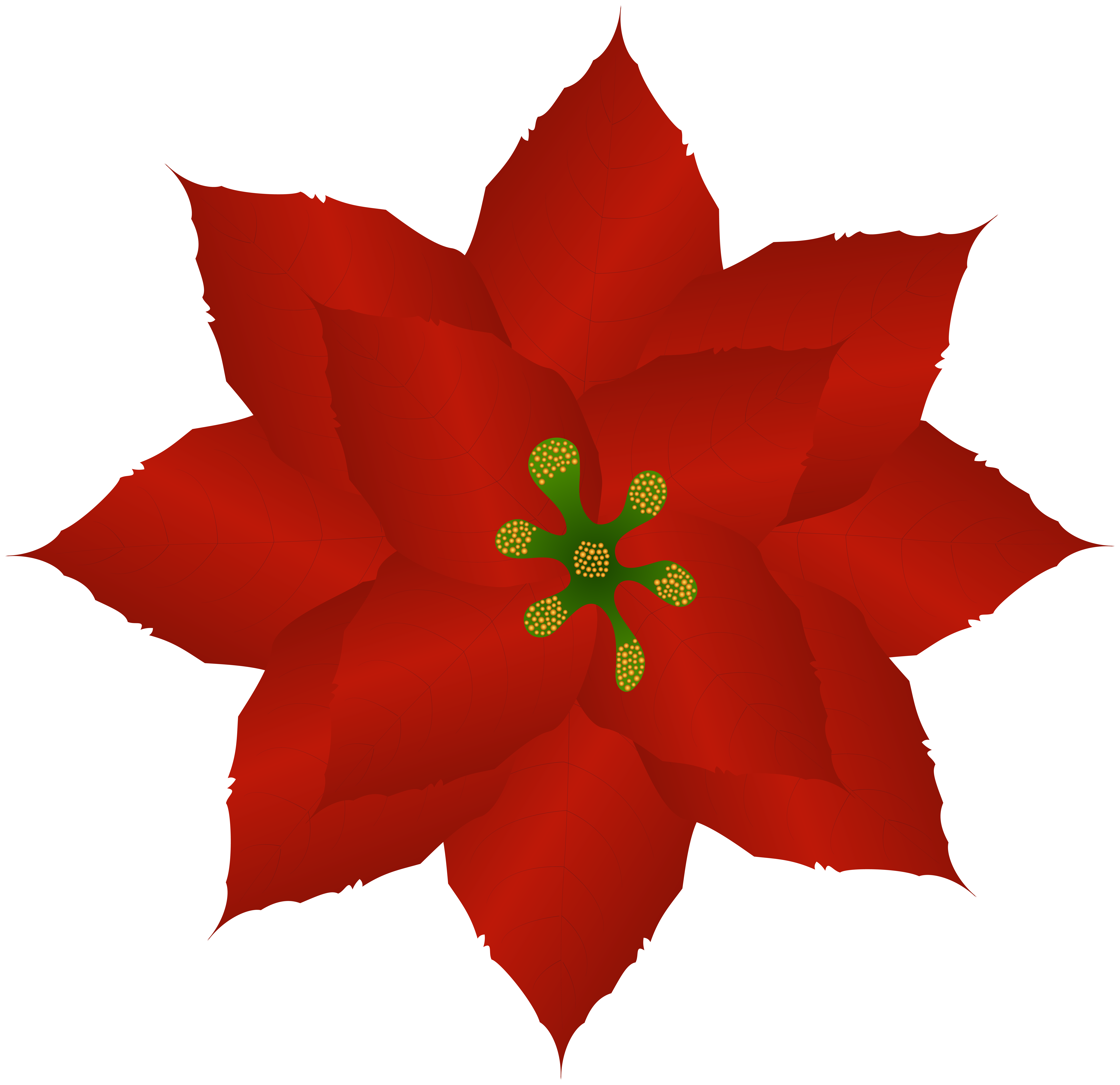 Poinsettia art image gallery. Poinsetta clip picture freeuse