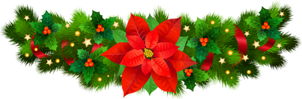 Poinsettia transparent stationary. Christmas decorative with png