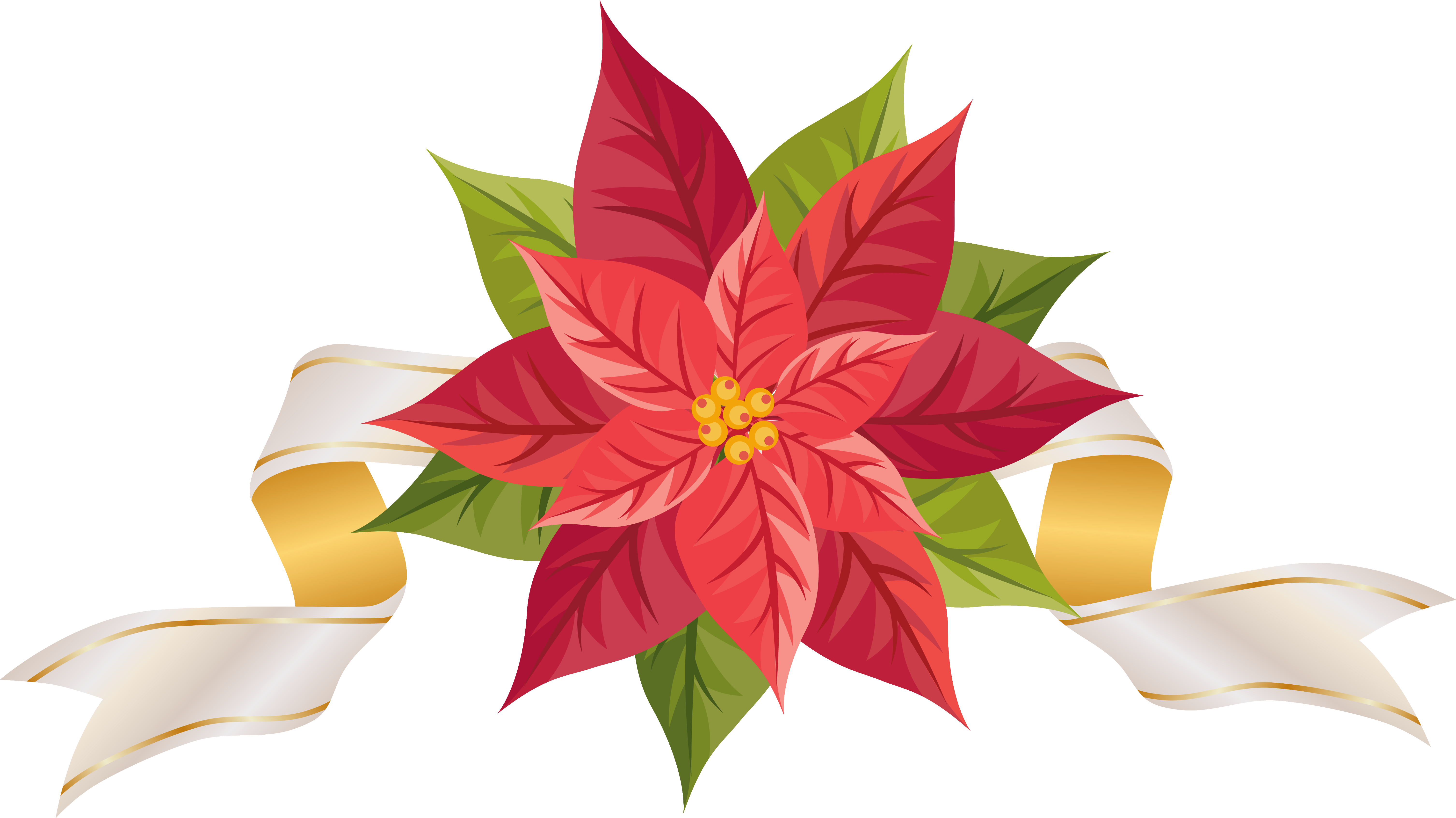 Poinsettia transparent stationary. With ribbon png clipart
