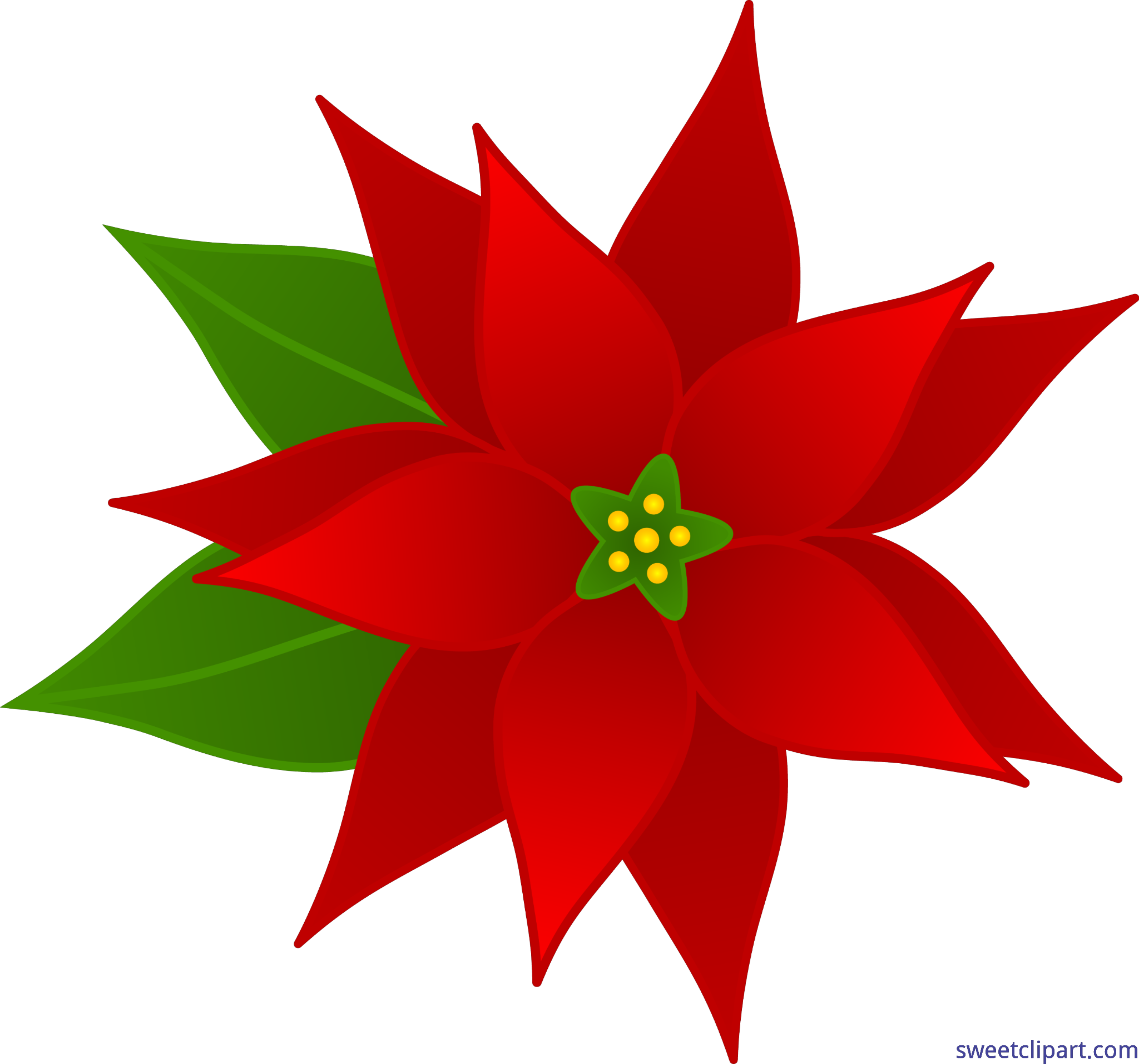 Christmas poinsettia art sweet. Poinsetta clip royalty free