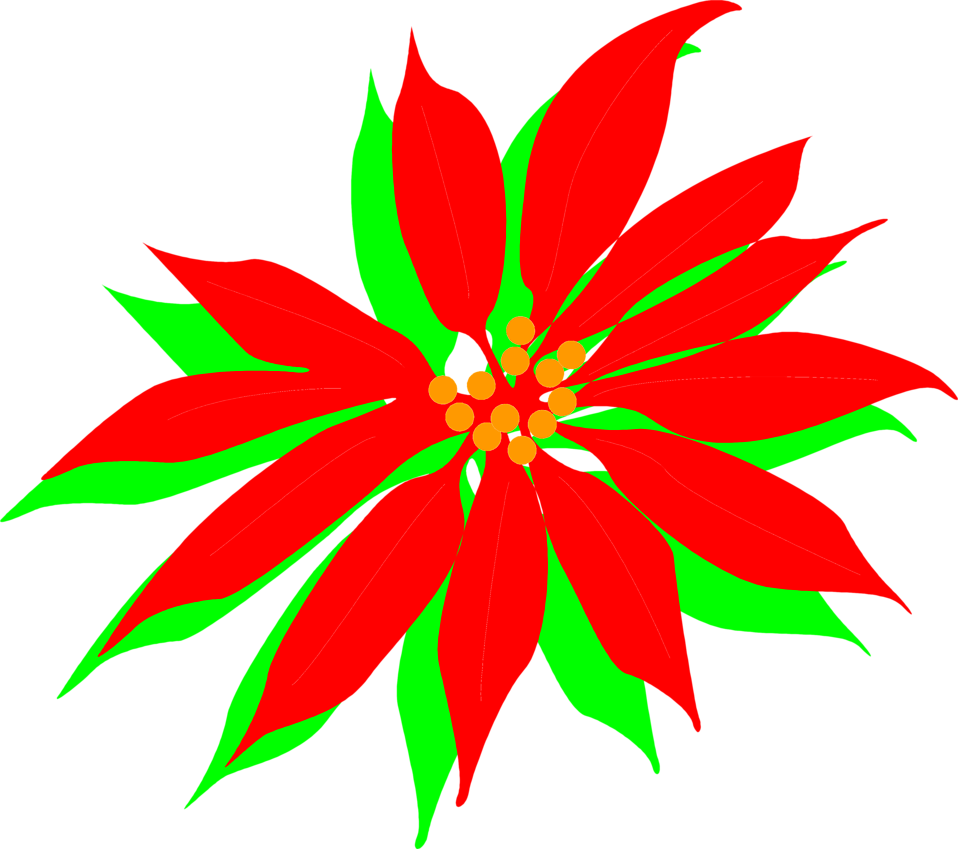 Poinsettia clip leaf. Free stock photo illustration
