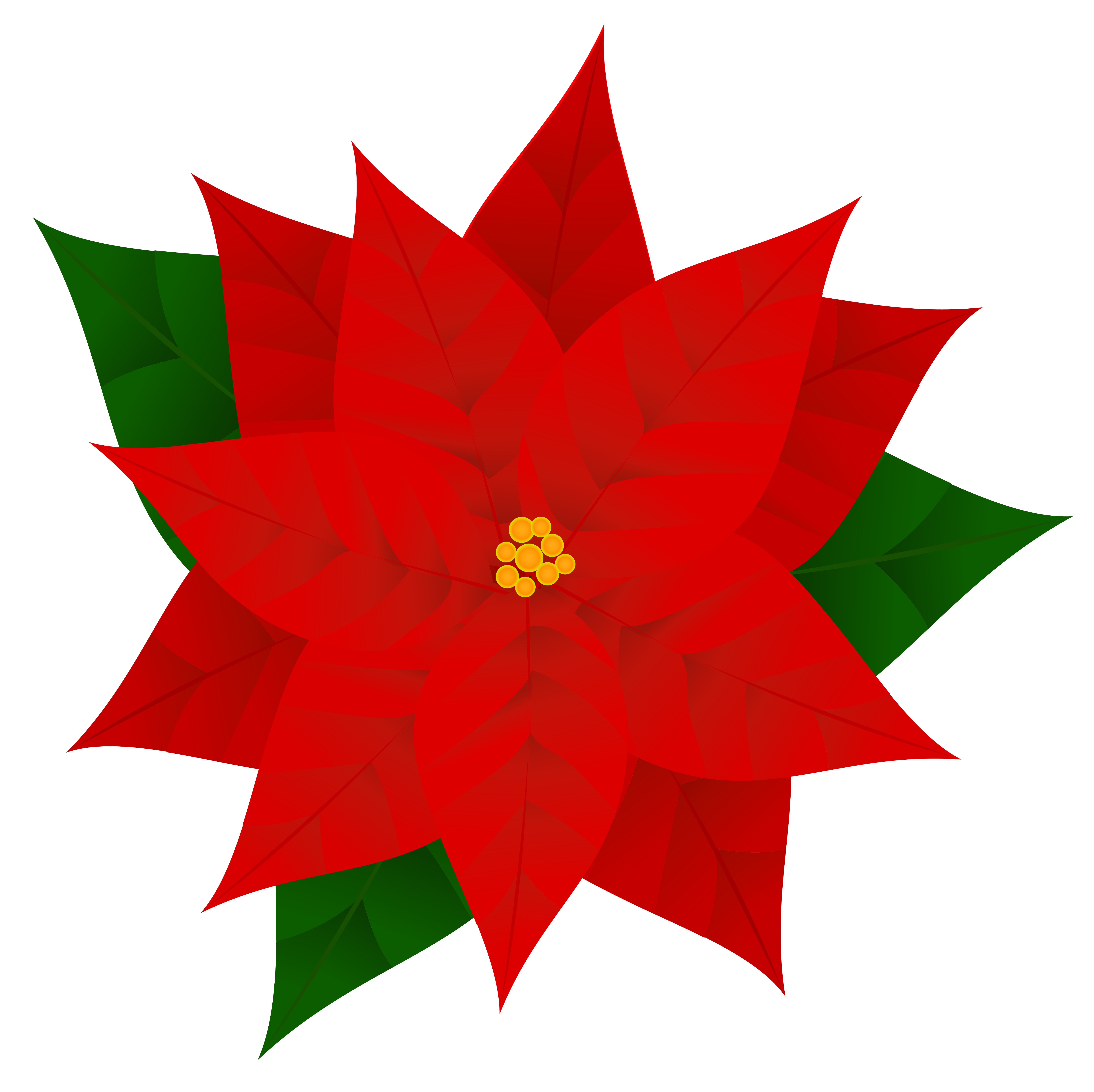 poinsetta clip animated