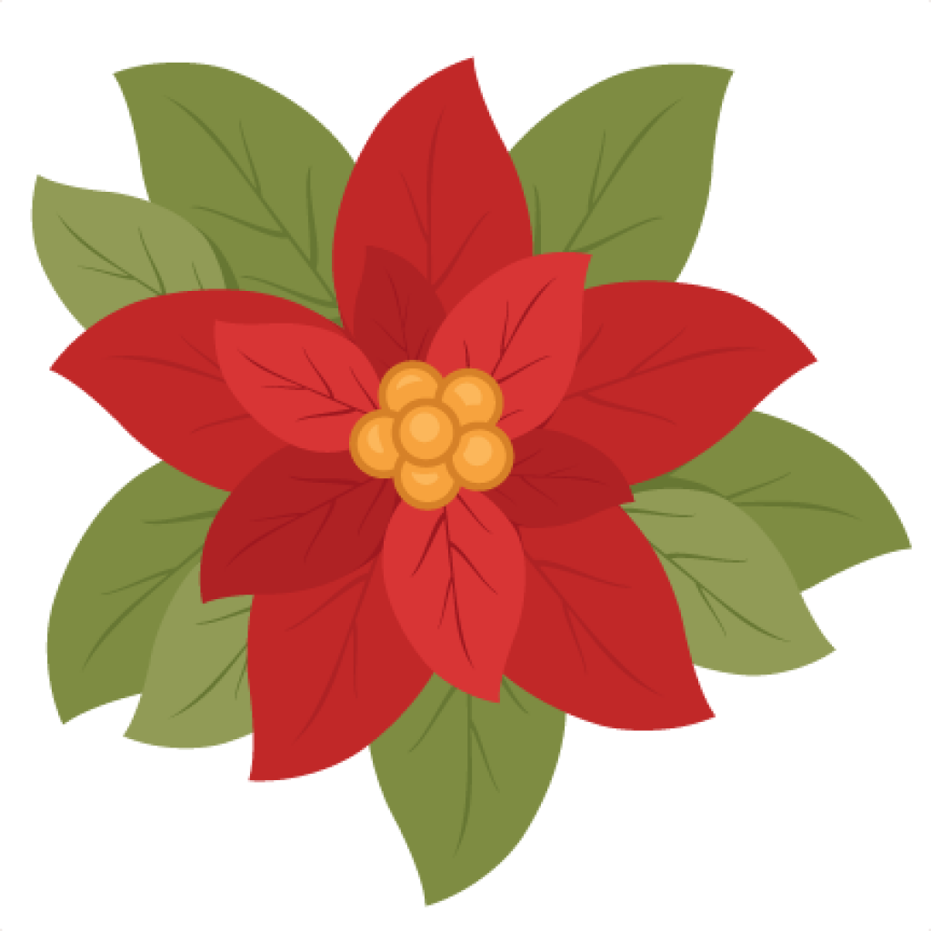 Poinsettia clip transparent background. Clipart free download svg
