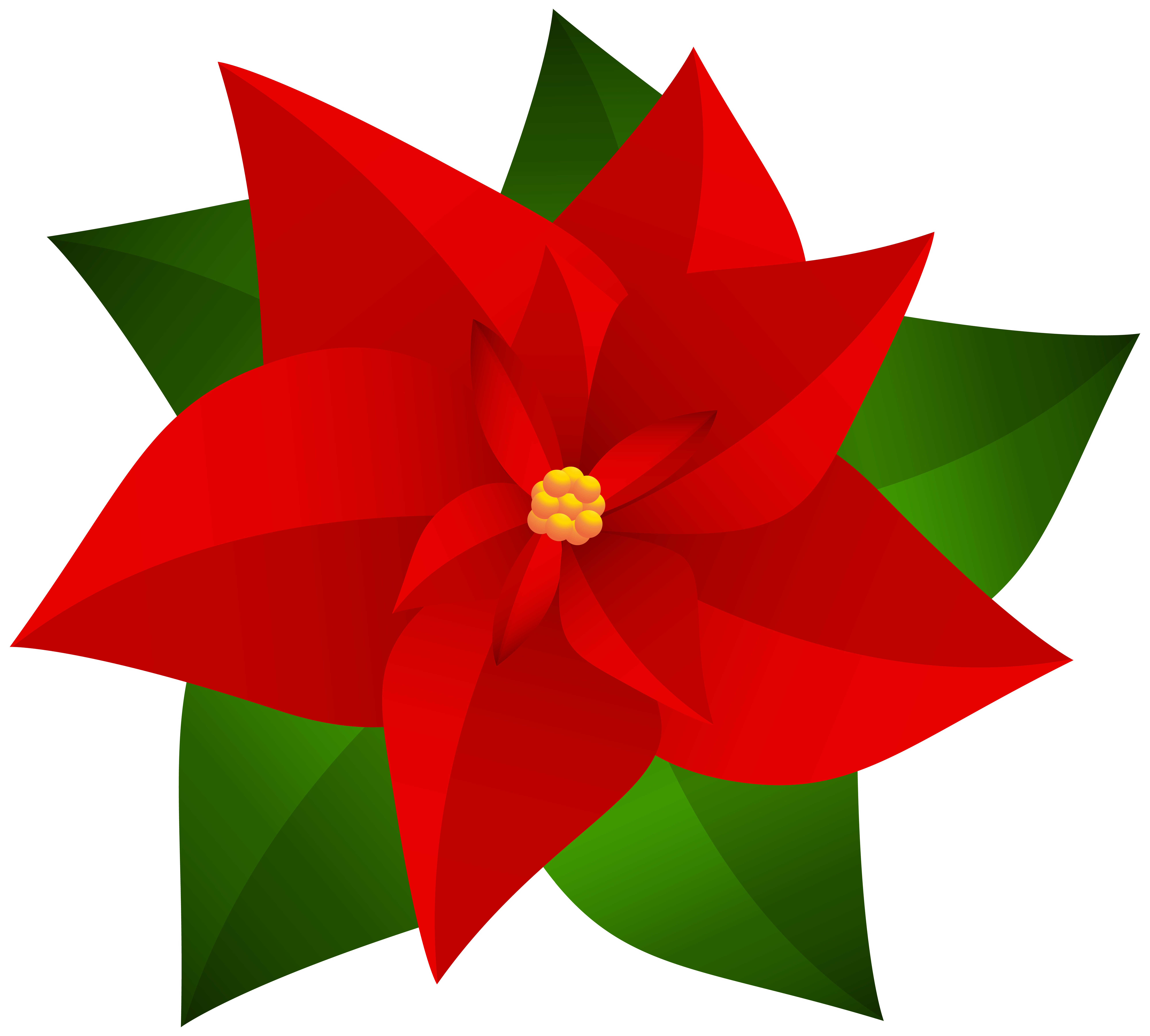 Poinsettia transparent. Christmas clip art gallery