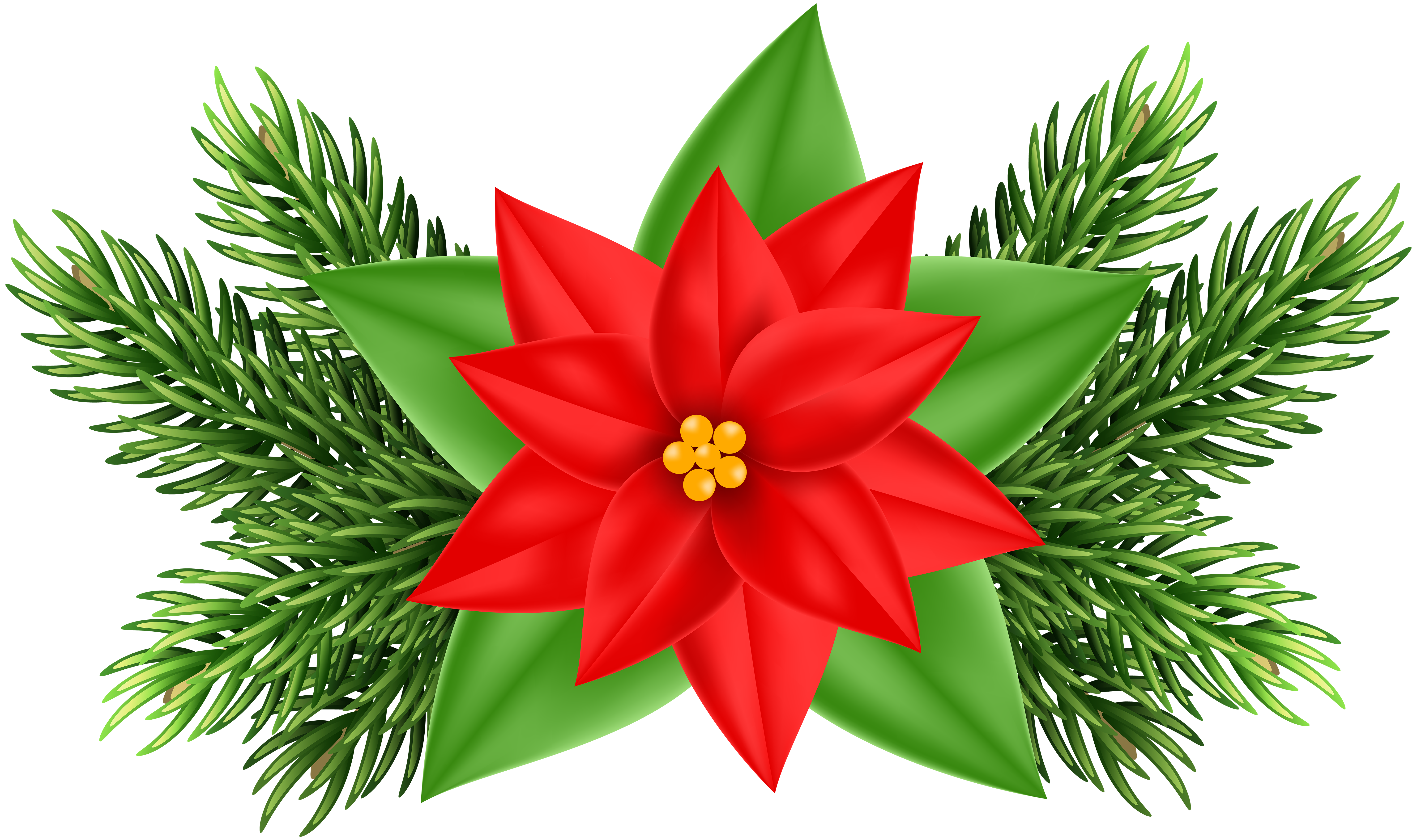 Poinsettia clipart poinsetta. Flower at getdrawings com