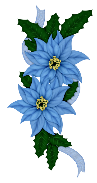 Poinsettias clipart blue. Frosty days its christmas