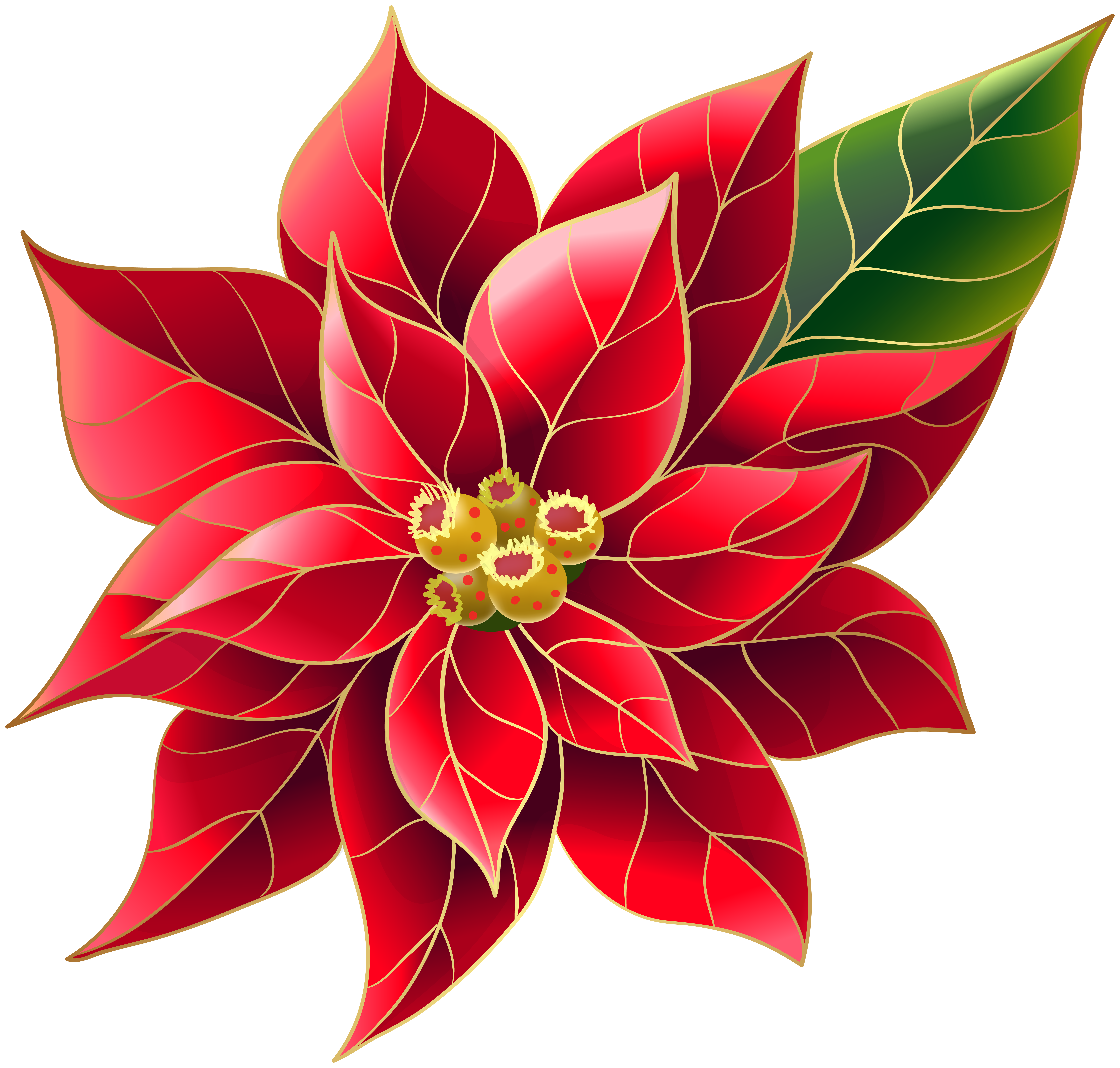 Xmas poinsettia png art. Poinsetta clip svg freeuse