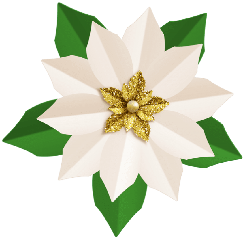 Poinsettia transparent white. Christmas png free images