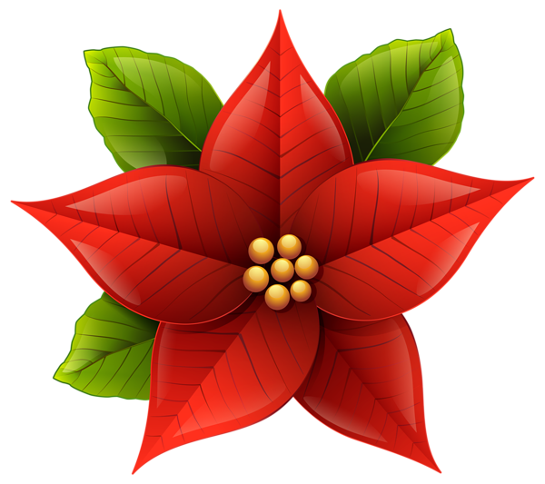 Poinsettias clipart yuletide. Christmas poinsettia png clip