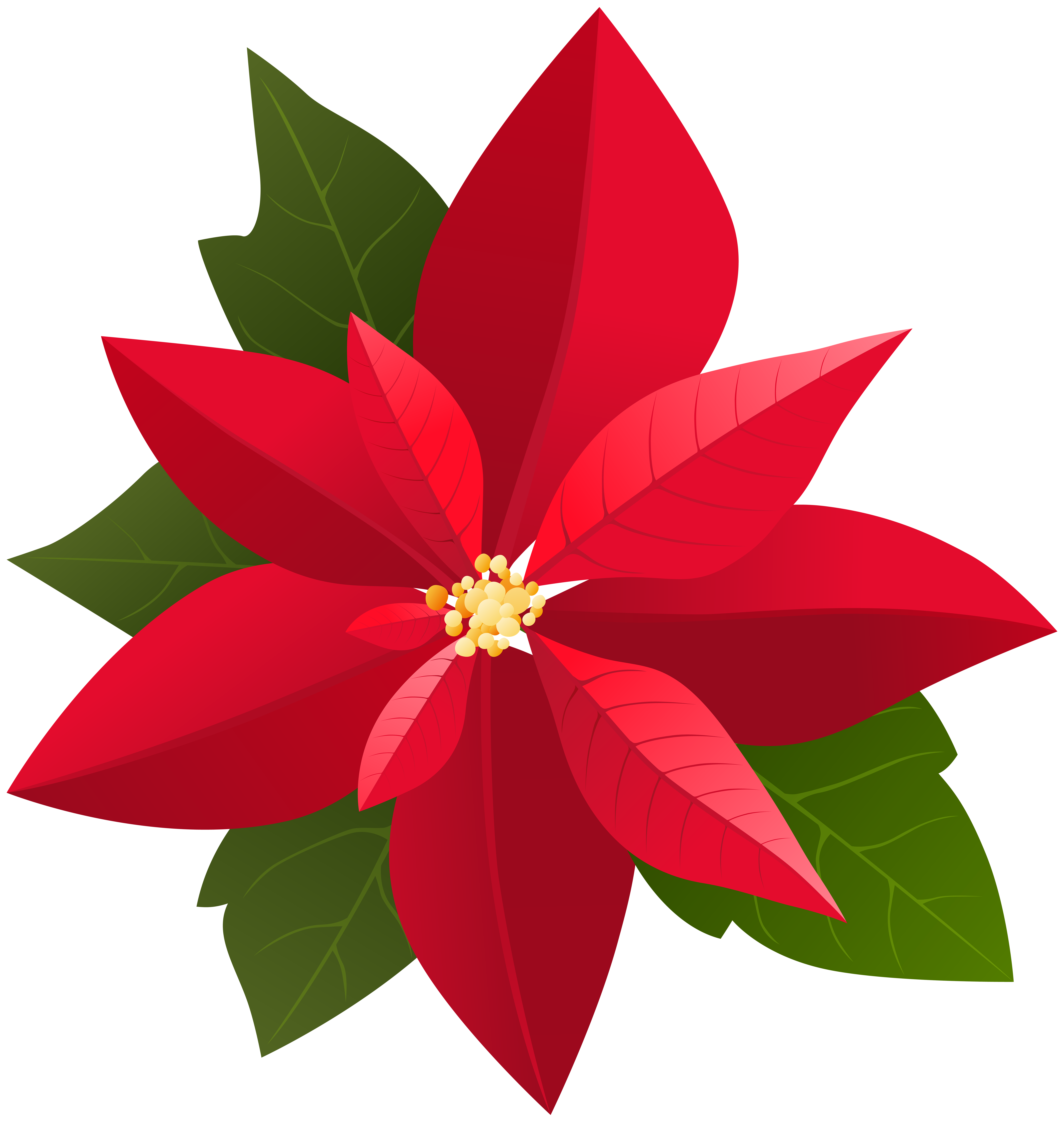 Christmas poinsettia png art. Poinsetta clip clip art black and white library