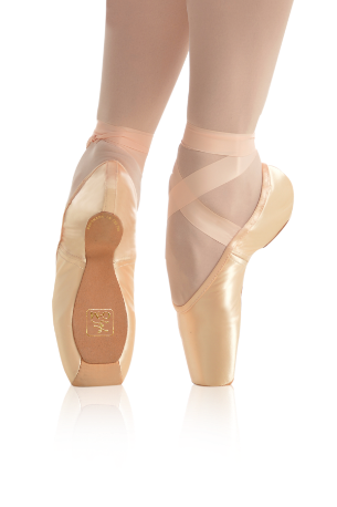 Pointe shoes png. Gaynor minden